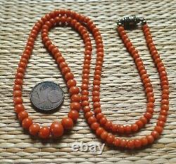 Ancien Collier Perle Corail Bijou Napoléon Antique Orange Coral Bead Necklace