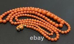 Antique Victorian Golden Clasp Natural Salmon Coral Graduated Bead Necklace